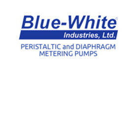 BLUE WHITE PUMPS